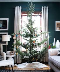 Best Smelling Christmas Tree Types by Best 25 Fraser Fir Ideas On Pinterest Christmas Tree Types