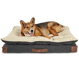 Bed And Biscuit Sioux City by Pet Supplies Pet Food And Pet Products From Petco Com
