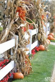 Halloween Decorations Pinterest Outdoor by Best 25 Fall Yard Decor Ideas On Pinterest Fall Mailbox Decor