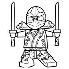 The Ninja In Spectacular Costume