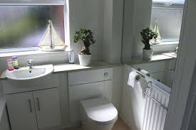 Plants For Bathrooms With No Light by Cool Plants For Bathroom U2013 Coderblvd Com