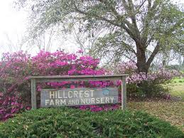 Hillcrest Farms Pumpkin Patch by Welcome To Hillcrest Farm Get Gps Directions To Our Farm
