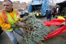 Download Christmas Tree Pick Up Chicago