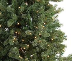 Types Of Christmas Trees With Sparse Branches by Harrow U0027s Melville Ny Trees