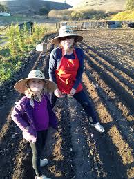 Pumpkin Patch Half Moon Bay Yelp by Tunitas Creek Family Farm History