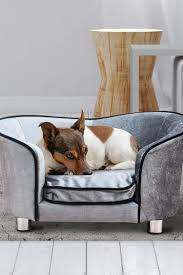 luxus hundecouch mit einem weichen kissen hunde