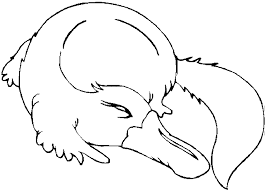 Free Australian Animals Coloring Pages 494317 For 2015