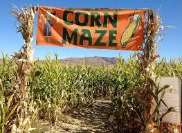 South Reno Pumpkin Patch by October Fun At Reno U0027s Ferrari Farms Area 89521 An Alien In