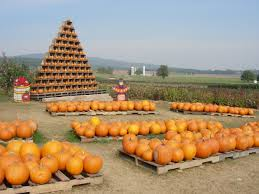 Pumpkin Patch Maryland by Things To Do With Kids In Frederick Md Frederick County