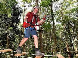 100 Treetops Maleny The Footage That Sent New Tourist Attraction Into Overdrive