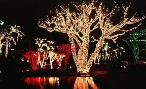 Tree Trunk Wrap Lights Uk Led