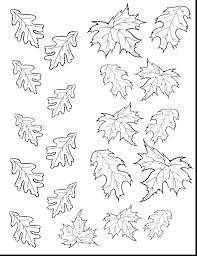 Superb Fall Leaves Coloring Page Pages Leaf Free Printable Autumn Name Tags Identification Guide Pictures