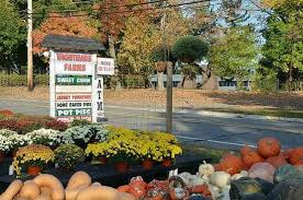 Pumpkin Picking Nj Near Staten Island by Wightman U0027s Farm Morristown All You Need To Know Before You Go