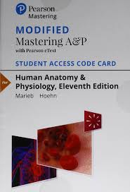 Modified Mastering A&P With Pearson EText -- Standalone ... How To Apply A Discount Or Access Code Your Order Pearson Mathxl Coupons Simply Drses Coupon Codes Mb2 Phoenix Zoo Lights 2018 My Lab Access Code Mymathlab Mastering Chemistry Ucertify Garneau Slippers Learn Search Engine Opmization Udemy Coupon Leapfrog Store Uk Chabad Car Rental Discounts Home Facebook Malani Jewelers Aloha 2 Go Pearson 2014