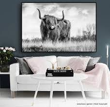 longhorn kuh auf leinwand