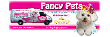 mobile cat grooming fancy pets mobile pet grooming 754 200 1790 professional