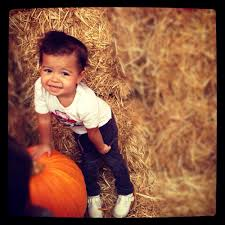Best Pumpkin Patch Near Corona Ca by The Pumpkin Factory 59 Photos U0026 28 Reviews Pumpkin Patches