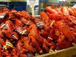 cuisiner homard congelé homard vivant homard congelé viande homard congelé queue buy