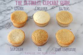 The Ultimate Cupcake Guide Shows How Different Ingredients And Techniques Make Cupcakes Light Greasy