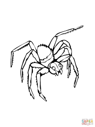Click The Black Widow Coloring Pages