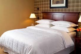 hotel photos sheraton nilai hotel