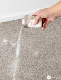 best 25 carpet cleaning recipes ideas on carpet