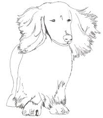 Dachshund Coloring Pages Art Galleries In