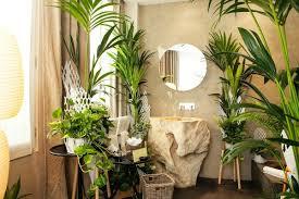 plante verte dans une chambre à coucher plante verte chambre a coucher systembase co