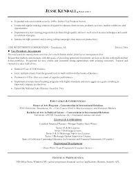 Vp Of It Resume Vice President Finance Sample