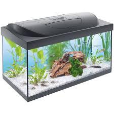 aquarium 30 litres achat vente aquarium 30 litres pas cher