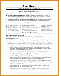 Vice President Of Operations Resume Luxury Examples Awesome Lovely Templats Fresh