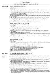 Download Hotel Sales Manager Resume Sample As Image File