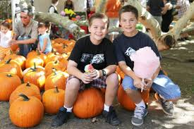 Irvine Pumpkin Patch Hours by Best 2016 Halloween Events For Kids In Orange County Cbs Los Angeles