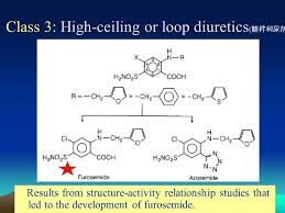 High Ceiling Diuretics Can Cause by 1 Chapter 10 Diuretics And Synthetic Hypoglycemic Drugs Pei Yu Pei