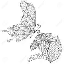 Hand Drawn Tribal Papillon Volant Et Hibiskus Fleur Pour Pages à