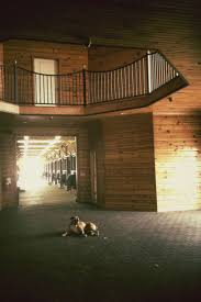 813 Best Future Horse Barn Images On Pinterest   Dream Barn, Horse ... Best 25 Wedding Images Ideas On Pinterest Table 17 Best Greer Sc South Carolina Beautiful Ceiling Draping And Patio Lights Hung In The Cannon Centre Campbells Covered Bridge Kimmie Andreas Married South Jessica Barley 99 Capture Your Community Photo Campaign Barn Architecture Cottages 155 Doors Country Barns 98 Wedding Venues Rustic Carolina Chic Red Apple Tree Otography Vanessa Bridal Portrait At The Cliffs