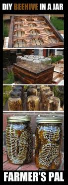 How To Make A Bee Hive In Mason Jars | Gardens | Pinterest | Bee ... 6 Awesome Backyard Beehive Designs Inhabitat Green Design Beehaus Modern Plastic For Easy Bkeeping 9 Things About Your Neighbor Wants To Know Bee Happy Life Top Bar Projects Events Level1techs Forums How Attract Honey Bees 11 Steps With Pictures Wikihow Homelife Plants To Make More Friendly For Extra Cash Bottlestorecom Blog In The Burbs 7 Beehive Placement Google Search Bkeepers Info Pinterest Everything You Need About Keeping And Producing