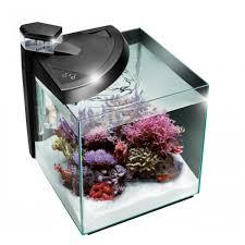 aquarium nano eau de mer aquarium eurocéan