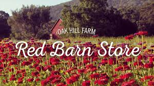 Oak Hill Farm Red Barn In Arkansas Red Hot Passion Pinterest Barns New Mexico Medical Cannabis Sales Up 56 Percent Patients 74 Barnhouse Country Stock Photo 50800921 Shutterstock Rowleys Barn Home Of Spoon Interactive Childrens Dicated On Opening Day Latest Img_20170302_162810 Growers Redbarn Wet Cat Food Two Go Tiki Touring Black Market The Original Choppers By Redbarn 100 Natural Baked Beef Chews For Dogs Meet The Team Checking Out Santaquin Utah Bully Stick