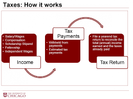 Tax Responsibilities for International Students and Scholars