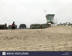 100 Silver Strand Beach Oxnard Andrea Dransfield A COMBERS Volunteer Surveys
