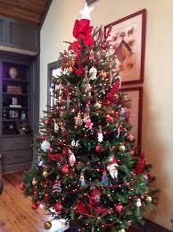 Fraser Christmas Tree Care by Clements Christmas Tree Delivery Service Nashville And Surrounding