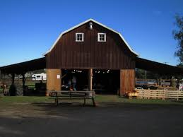 Pumpkin Patch Bellingham Wa by Field Trips And Pre Outings Dan Cramer U0027s Western Town