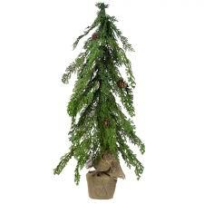 24 Potted Cedar Tree