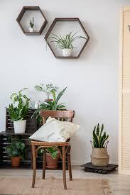 jungle lomado möbel