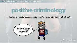 Cesare Lombroso Biography Theory Criminology
