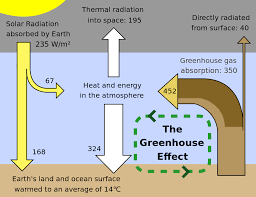 Define Carbon Sink Geography by Greenhouse Gas Wikipedia