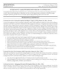 Cto Resume Word Template Writing For Executives Executive Writer Templates Cfos Ideas