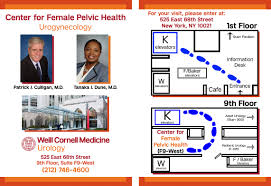Pelvic Floor Spasms Female by Center For Female Pelvic Health Weill Cornell Medicine