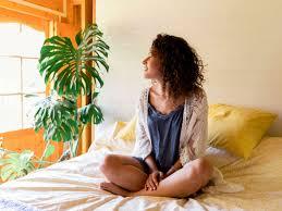 zimmerpflanzen fürs schlafzimmer diese sind perfekt